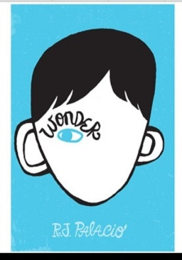 The book thief by Marcus Zusack, Wonder by R.J Palacio, Itch Rocks by Simon Mayo